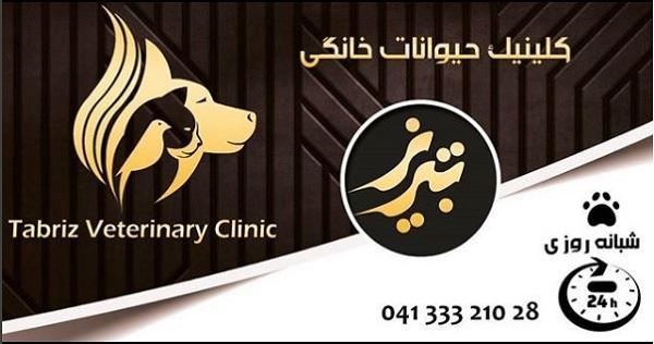 کلینیک شبانه روزی حیوانات خانگی تبریز