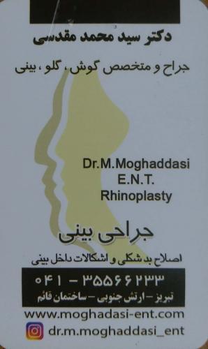 دکتر سید محمد مقدسی