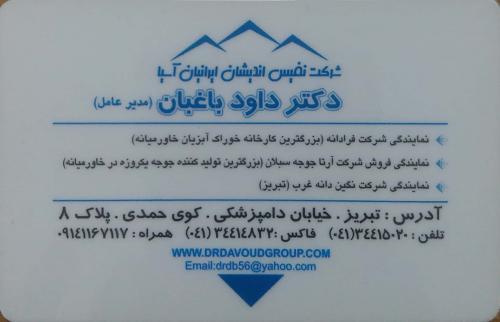 شرکت نفیس اندیشان ایرانیان آسیا