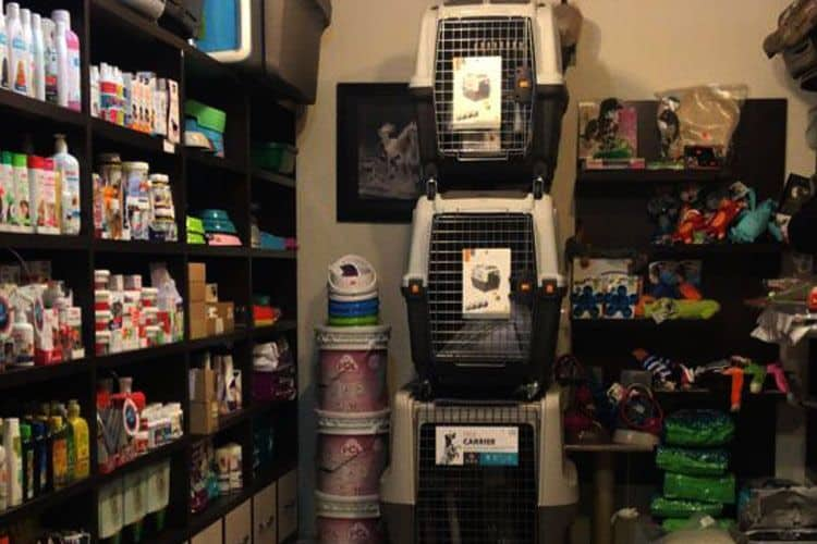 کلینیک حیوانات خانگی شهریار